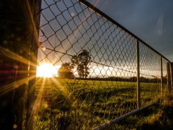 sunset in new zealand behind farm fence/gate