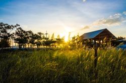 Sunset in rural landscapes