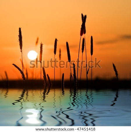 sunset in steppe reflected in a water