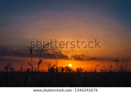 Sunset in the country #1346242676