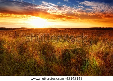 Sunset in the countryside - extreme DOF