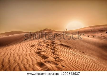 Sunset in the desert in Dubai #1200643537