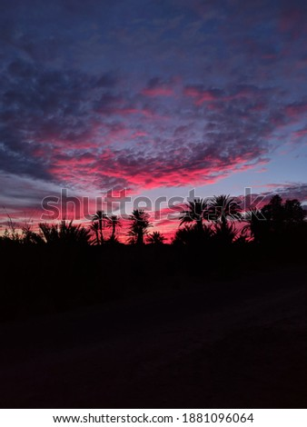 sunset in the desert le coucher du soleil dans le desert Foto stock ©