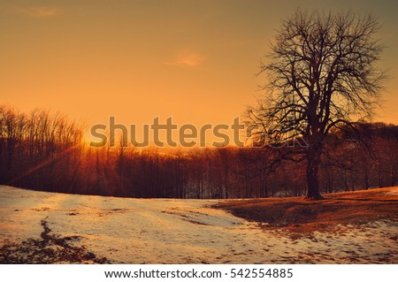 Sunset in the mountains and countryside landscape covered in frost and snow #542554885