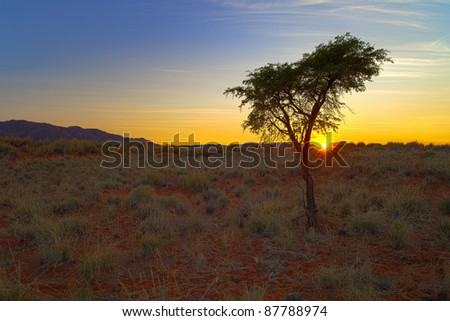 Sunset in the NamibRand Nature Reserve in Namibia