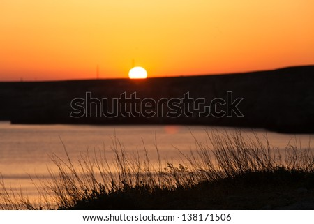 Sunset in the sea bay with grass silhouette