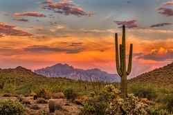Sunset in the Sonoran Desert near Phoenix, Arizona