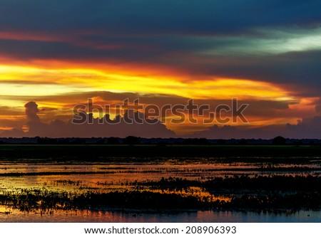 Sunset in the water world in El Cedral - Los Llanos, Venezuela, Latin America