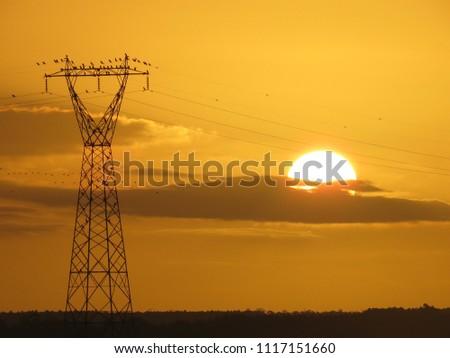 Sunset in Tramandaí #1117151660