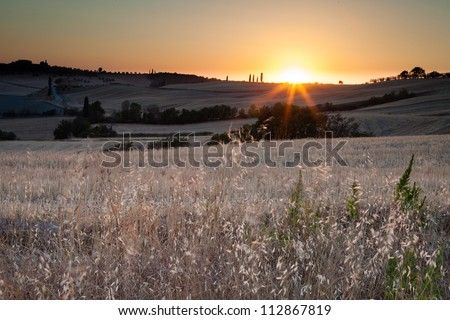 Sunset in tuscan country, near Pienza, Tuscany, Italy