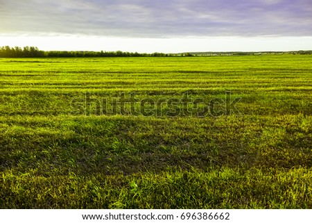 Sunset is over the field - Shutterstock ID 696386662