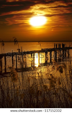 Sunset Lake - Garda Lake - Italy / Fantastic sunset at the lake with reeds in the foreground