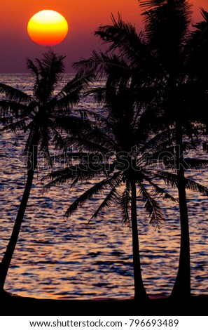 Stock Photo sunset landscape. beach sunset. sunset on the beach