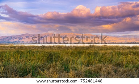 Sunset landscape of the marshes of south San Francisco bay, Mission Peak covered in sunset colored clouds in the background, Sunnyvale, California