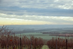 Sunset landscape scenery. Agricultural fields and Vineyard landscape in Germany Rhineland Palatinate in March. Wind turbines in distance
