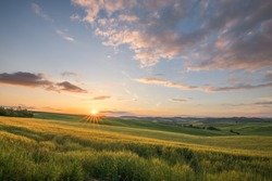 Sunset landscapes over the green grassland and rolling hills in Tuscany