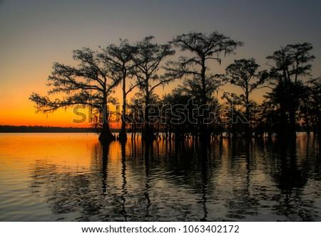 Sunset Louisiana bayou