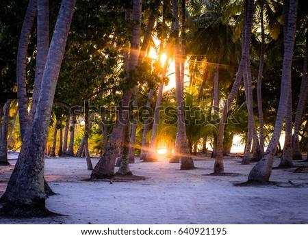 Sunset Maldives Zdjęcia stock ©