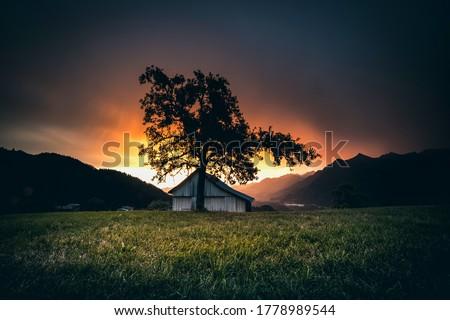 Sunset mountain cabin tree silhouette. Mountain cabin sunset silhouette. Sunset mountain house view. Sunset mountain farm