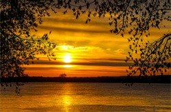 Sunset nature river sky through tree branches sunset panorama