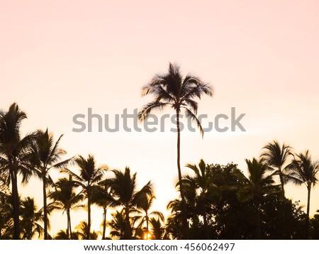 Sunset of Hawaii Island - Shutterstock ID 456062497