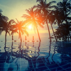 Sunset on a tropical resort beach with silhouettes of palm trees.