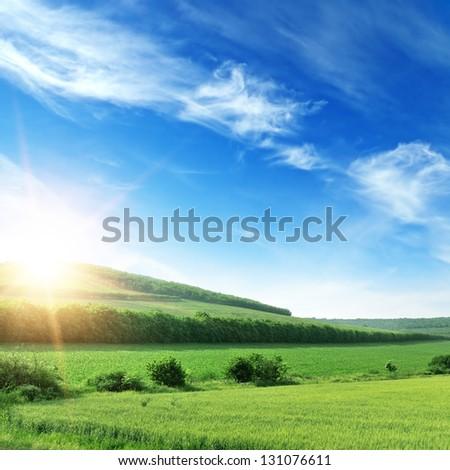 sunset on spring field