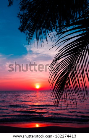 sunset on the beach #182274413