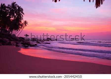Sunset on the beach  #205442410
