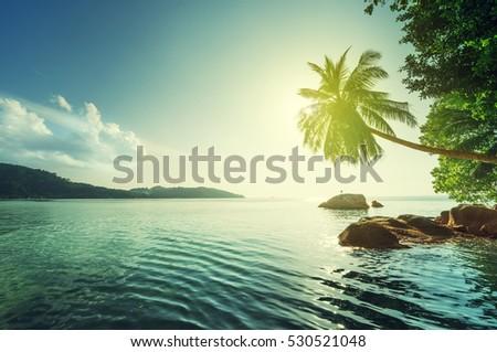 sunset on the beach, Mahe island, Seychelles #530521048