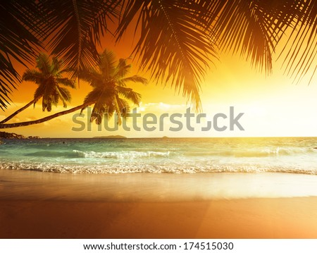 sunset on the beach of caribbean sea #174515030
