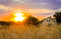 Sunset on the Homestead with wheat field waving