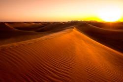 Sunset on the red sand dunes near Dubai, United Arab Emirates.