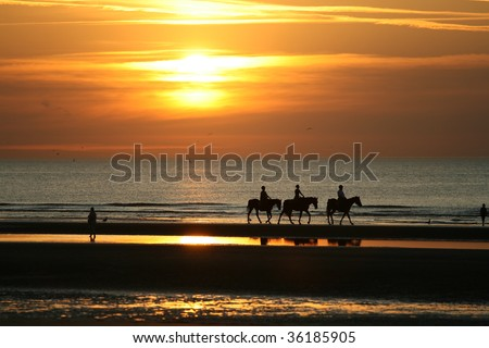 Sunset on the seashore with silhouettes or people riding horses and walking on the coast.