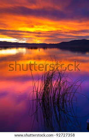 Sunset on Utah Lake with Patch of Reeds in the Foreground