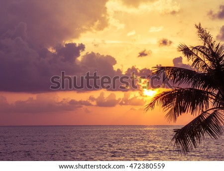 sunset, orange sky with clouds and silhouette coconut leafs #472380559