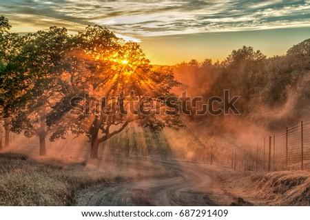 Sunset over a Sonoma County Vineyard near Cloverdale, CA