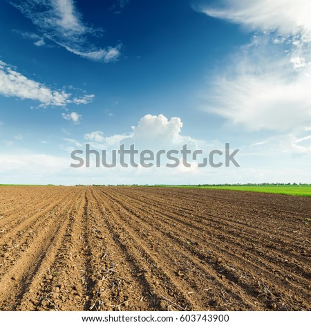 sunset over black agricultural field
