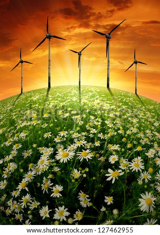 sunset over blooming meadow with wind turbines
