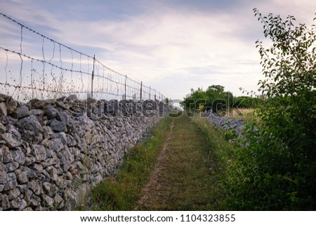 Sunset over country road bounded by drystone walls. Landscape of Murge. Apulia, Italy