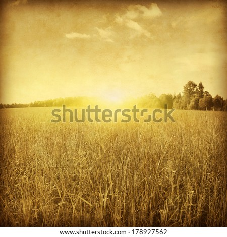 Sunset over green grass field. Grunge style photo. #178927562