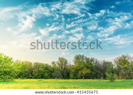 sunset over green meadow and trees in cloudy sky