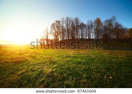 Sunset over green meadow with bare autumn trees on a hill