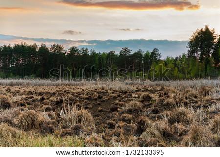 Sunset over marshland. Magazyn Nature Reserve in Sobibor Landscape Park in Poland, Europe. Zdjęcia stock ©