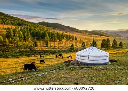 Sunset over Mongolian valley #600892928