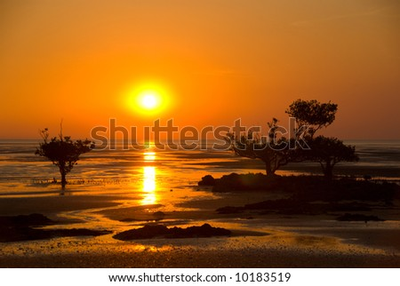 Sunset over mudflats and mangroves in Kakadu National Park
