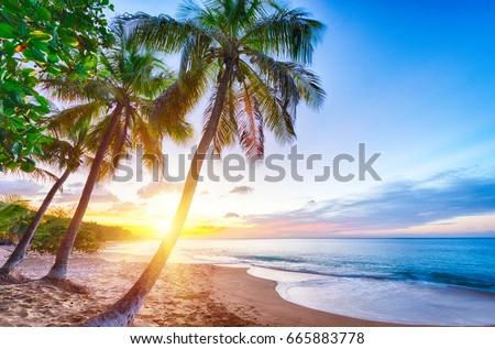Sunset over Pearl beach (Plage de la Perle) beach near Deshaies, Guadeloupe, Caribbean