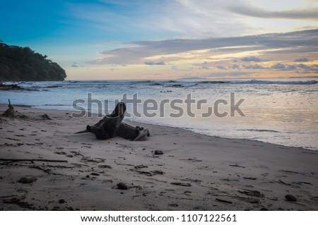 Sunset over Playa Blanca, Costa Rica #1107122561