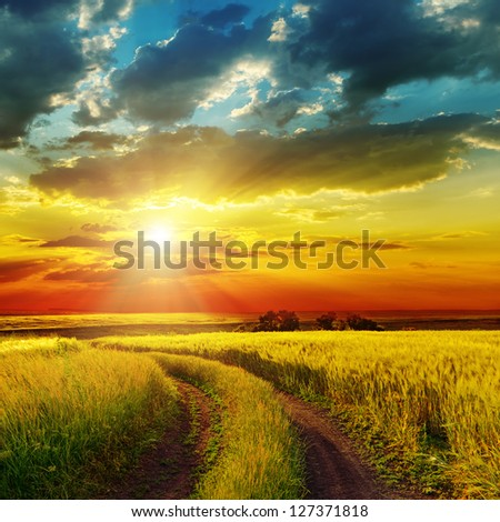 sunset over rural road near green field