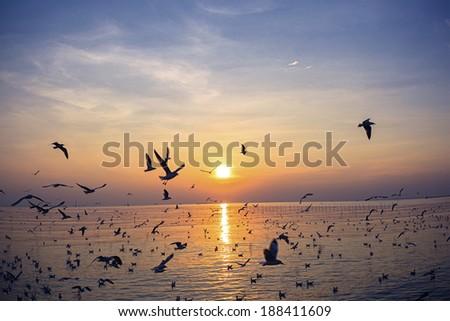 Sunset over sea #188411609